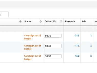 Successful Amazon PPC Campaign