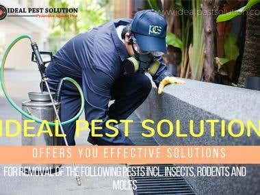 http://idealpestsolution.com/about.php