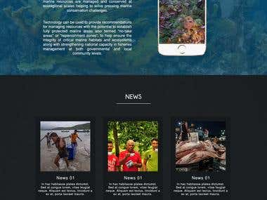 Home page Desgin