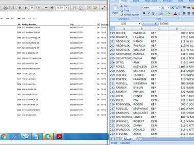 PDF to Excel Copy Paste - Big Data