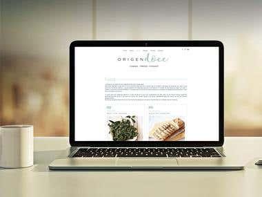 Blogger Website design
