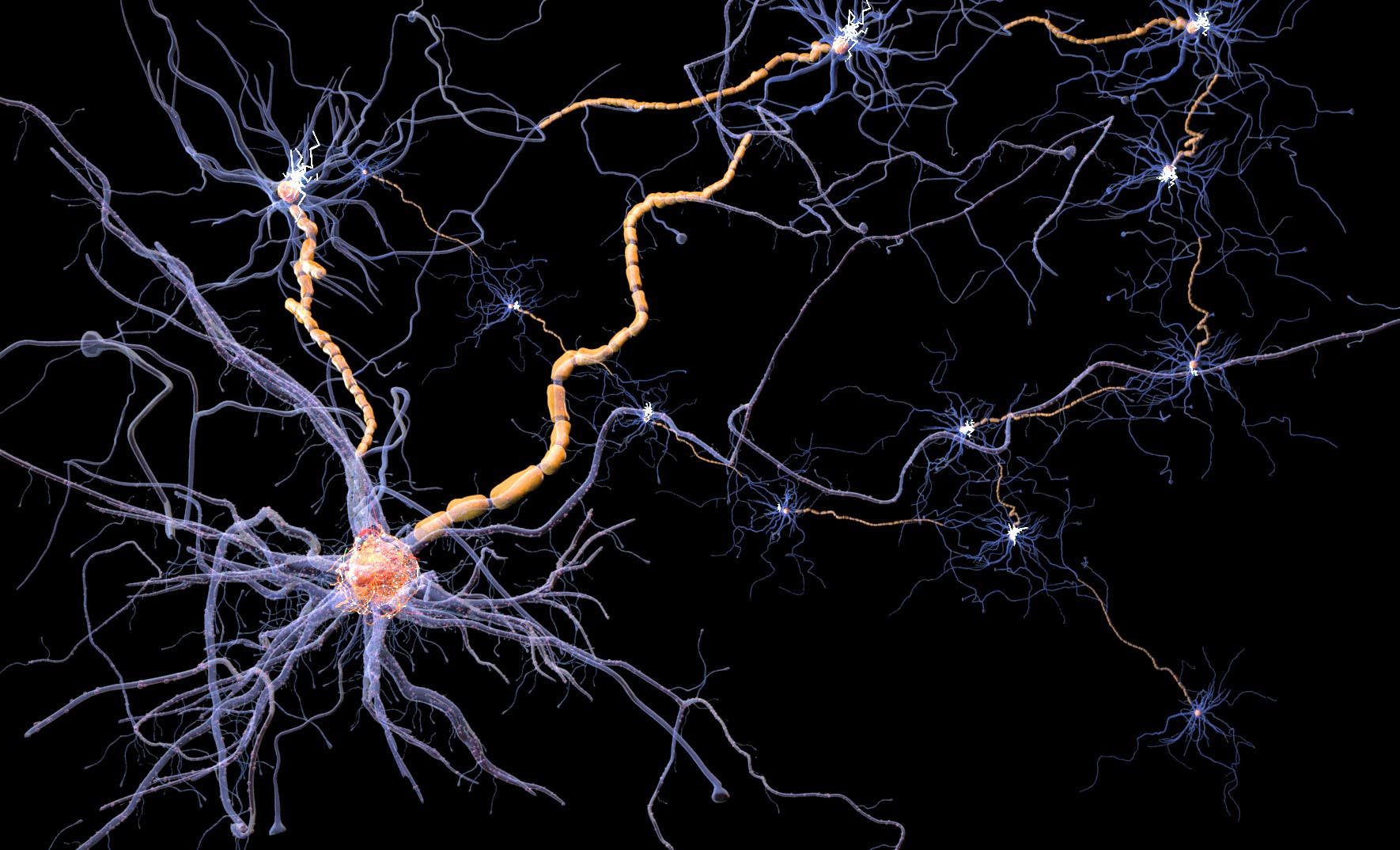 Nerve cells network illustration