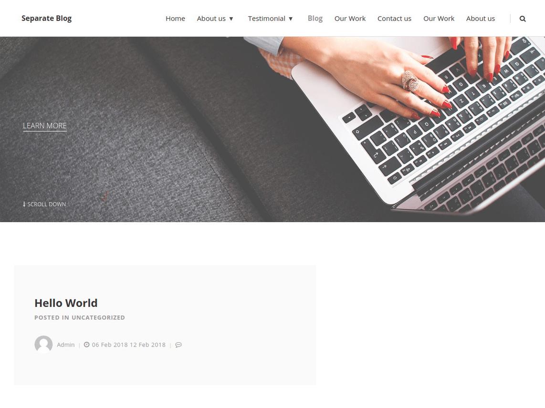 WordPress Theme (Separate Blog)