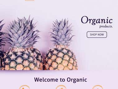 WEB SITE DESIGN - ORGANIC PRODUCT