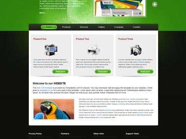 Partical Website