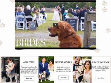 Pawfect for You | Wedding Day Pet Care, New York
