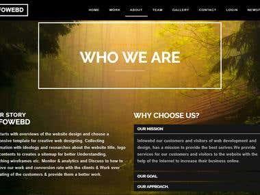 Company Website- Infowebd