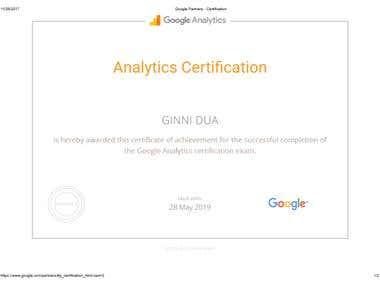 Google Partner Analytics Expert