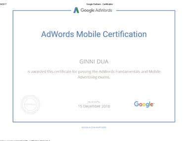 Google Partner Adwords Expert