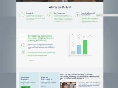 STAMCO.PK A WORDPRESS WEBSITE FOR A AUDITING COMPANY