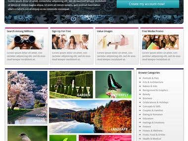 best web design and developing