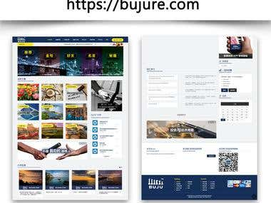 www.bujure.com | Speed Optimization | Wordpress