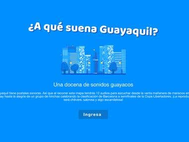 Sitio Web Guayaquil
