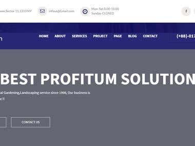 Profitum Website