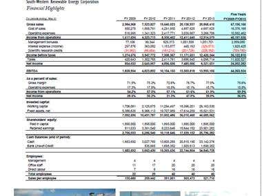Proforma Financial Statements