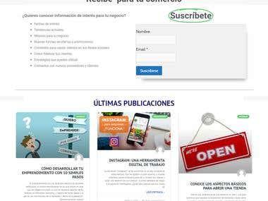 Creación de Sitio Web con diseño Flat