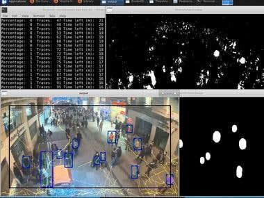 Multi-camera Pedestrian Tracking and Assesment