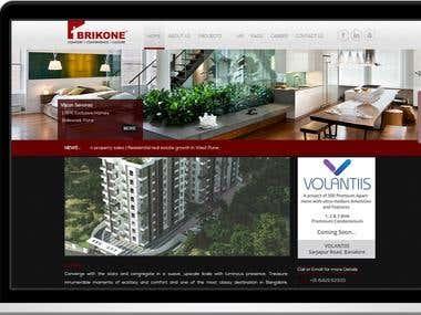 Brikone Properties