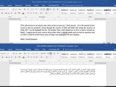 Translation in process