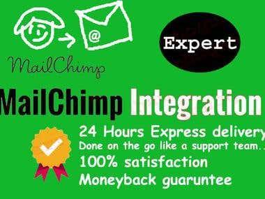 Mailchimp integration, setup and automation setup