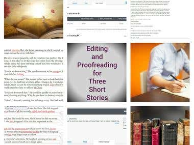 Editing and Proofreading Project - 5 Stars!