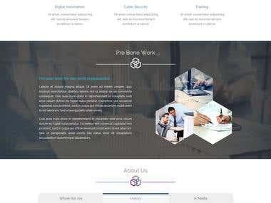 Design & Development of Vectuz Website