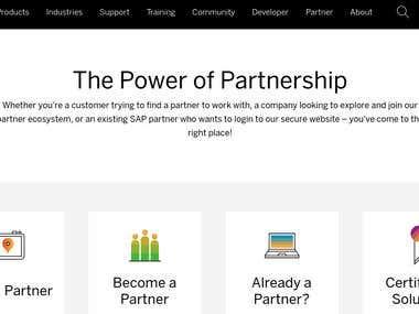 SAP Global Software