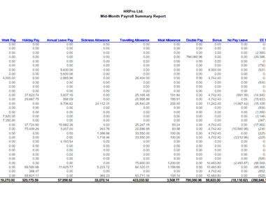 Payroll Summary Report