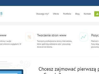 Web Systems - company website