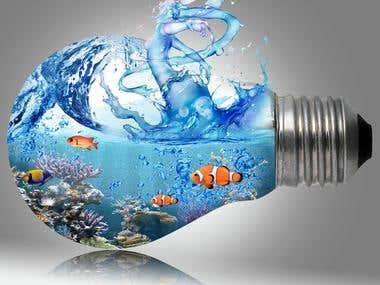 bulb manipulation