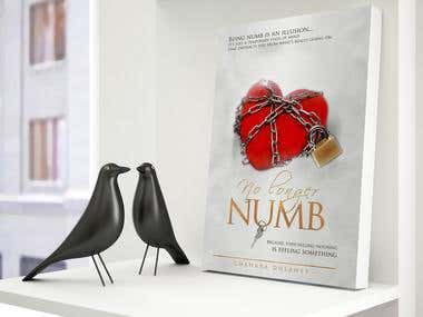 No Longer Numb - book cover and promotional materials