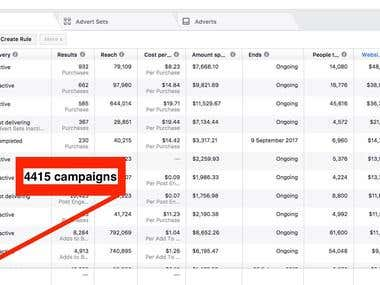 Facebook Ads Management Campaign