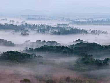 The Secret Wildlife Paradise Hidden in Korea's Border