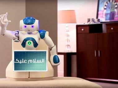Robot SeeDo