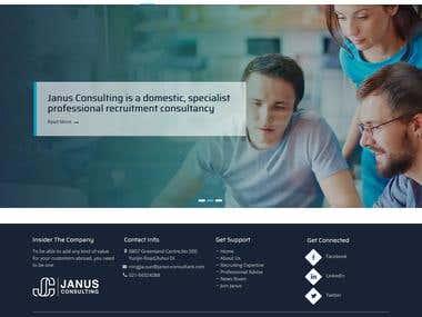 JanusConsulting