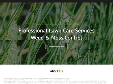 Wordpress Site | Lawn weed expert