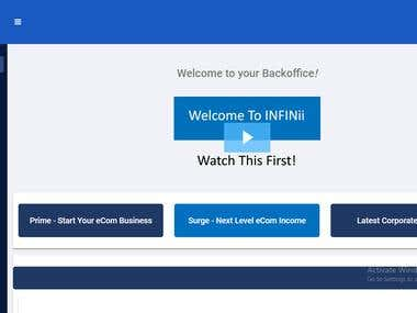 Ebay listing for a Ebay Dropshipping Store using Infinii!