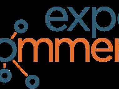 E-Commerce Operations Expert