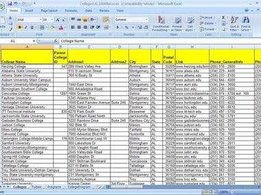 Any Kind of Data Entry, Data Processing