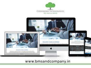 BMS & Company - Website Development