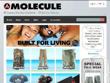 Molecule Asia