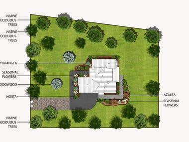 Landscape Layout Design