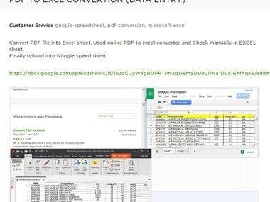 PDF TO EXCL CONVERSION (DATA ENTRY)
