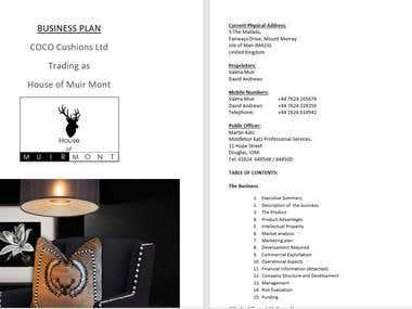 Coco Cushions Business Plan.