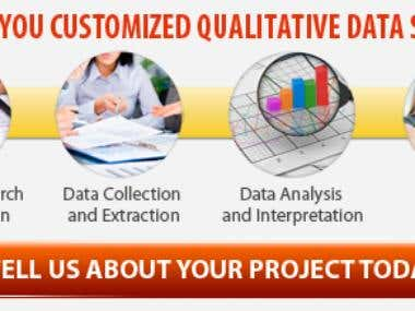 Data entry and analyst
