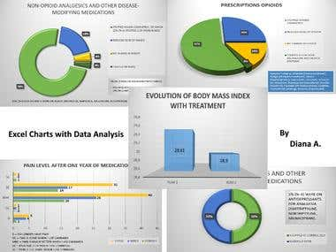 Create Charts from Excel Data for a PowerPoint Presentation