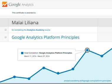 Analytics Platform Principles Certification