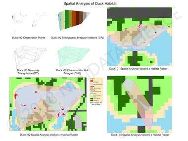 Geospatial Analysis | Movement Ecology