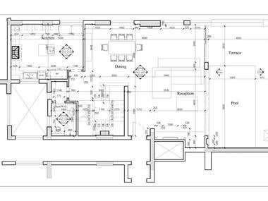 Architectural and working Plans