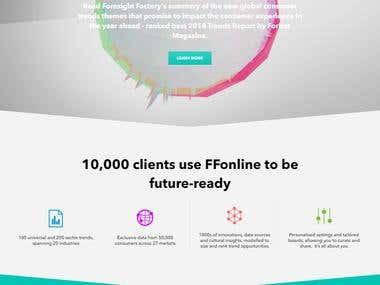 Business portfolio Website